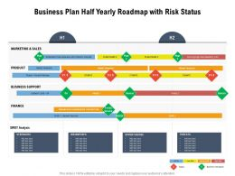 Business Plan Half Yearly Roadmap With Risk Status