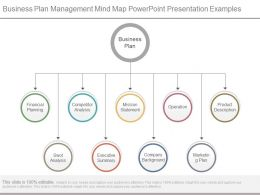 Business Plan Management Mind Map Powerpoint Presentation Examples