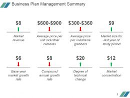 Business Plan Management Summary Powerpoint Guide