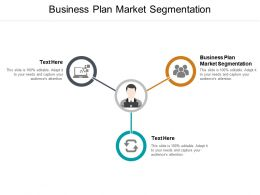 Business Plan Market Segmentation Ppt Powerpoint Presentation Model Template Cpb