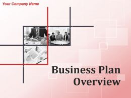 Business Plan Overview Powerpoint Presentation Slides