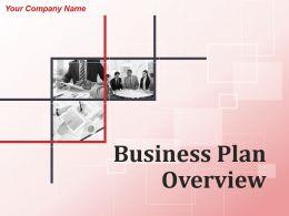 Business Plan Overview Powerpoint Presentation Slides