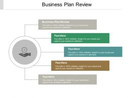 Business Plan Review Ppt Powerpoint Presentation File Designs Cpb