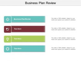 Business Plan Review Ppt Powerpoint Presentation Professional Background Designs Cpb