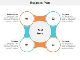 Business Plan Sample Ppt Powerpoint Presentation File Infographics Cpb