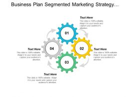 Business Plan Segmented Marketing Strategy Contact Relationship Management