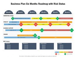 Business Plan Six Months Roadmap With Risk Status