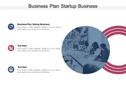 Business Plan Startup Business Ppt Powerpoint Presentation Styles Good Cpb
