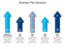 Business Plan Structure Ppt Powerpoint Presentation File Influencers Cpb