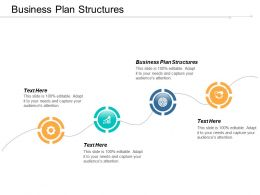 Business Plan Structures Ppt Powerpoint Presentation File Gridlines Cpb
