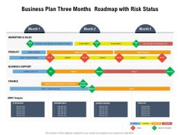 Business Plan Three Months Roadmap With Risk Status