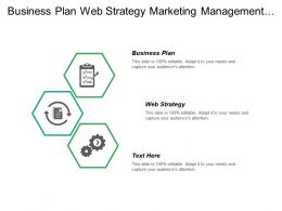 Business Plan Web Strategy Marketing Management Business Management Cpb