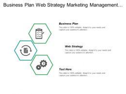 business_plan_web_strategy_marketing_management_business_management_cpb_Slide01