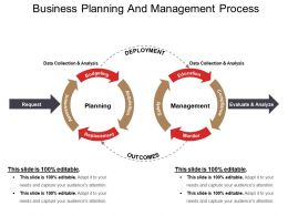 Business Planning And Management Process Ppt Example File