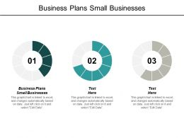 Business Plans Small Businesses Ppt Powerpoint Presentation Outline Elements Cpb