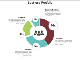 Business Portfolio Ppt Powerpoint Presentation File Skills Cpb