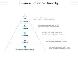 Business Positions Hierarchy Ppt Powerpoint Presentation Gallery Example Topics Cpb