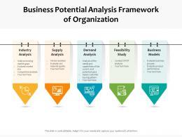 Business Potential Analysis Framework Of Organization