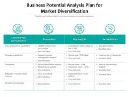 Business Potential Analysis Plan For Market Diversification
