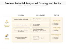 Business Potential Analysis Wit Strategy And Tactics