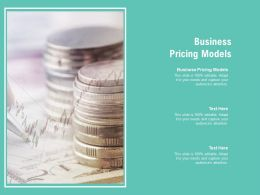 Business Pricing Models Ppt Powerpoint Presentation Outline Layouts Cpb
