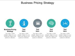 Business Pricing Strategy Ppt Powerpoint Presentation Slides Visuals Cpb