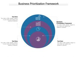 Business Prioritization Framework Ppt Powerpoint Presentation Professional Picture Cpb