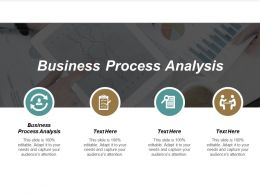 Business Process Analysis Ppt Powerpoint Presentation File Graphic Images Cpb