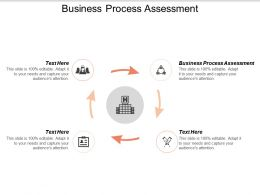 Business Process Assessment Ppt Powerpoint Presentation Styles Styles Cpb