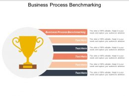 Business Process Benchmarking Ppt Powerpoint Presentation Styles Summary Cpb