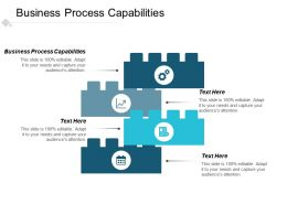 Business Process Capabilities Ppt Powerpoint Presentation Infographics Deck Cpb