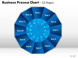 Business Process Chart 12 Stages Slides And Ppt Templates 0412