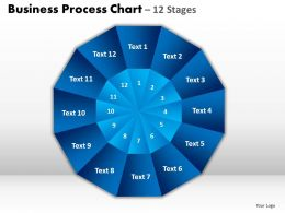 Business Process Chart 12 Stages Templates 1