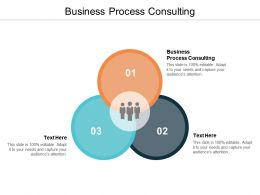 Business Process Consulting Ppt Powerpoint Presentation Slides Show Cpb