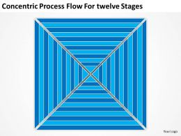 Business Process Diagram Example Concentric Flow Fortwelve Stages Powerpoint Templates