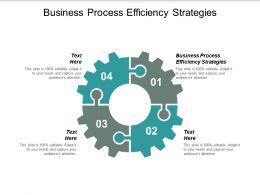 Business Process Efficiency Strategies Ppt Powerpoint Presentation Pictures Graphics Design Cpb