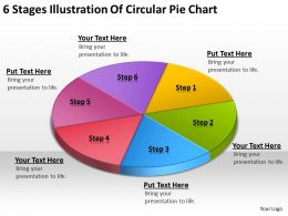 Business Process Flow Chart Example Stages Illustration Of Circular Pie Powerpoint Templates