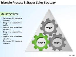 Business Process Flow Diagram Examples Triangle 3 Stages Sales Strategy Powerpoint Slides