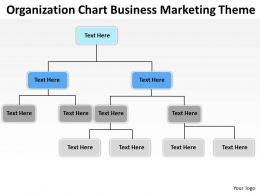 Business Process Flow Diagrams Organization Chart Marketing Theme Powerpoint Slides 0523