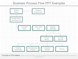 Business Process Flow Ppt Examples