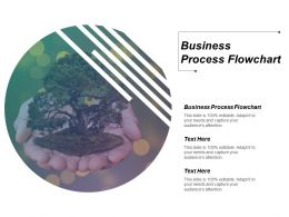 Business Process Flowchart Ppt Powerpoint Presentation Model Backgrounds Cpb
