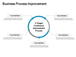 Business Process Improvement Circular Ppt Powerpoint Presentation Pictures Skills