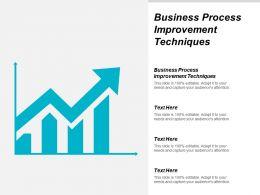 Business Process Improvement Techniques Ppt Powerpoint Presentation File Graphics Design Cpb