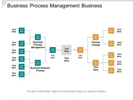 Business Process Management Business Network Process Process Change Cpb