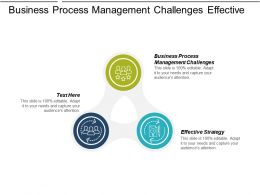 Business Process Management Challenges Effective Strategy Business Strategy Plan Cpb