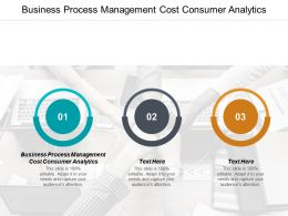Business Process Management Cost Consumer Analytics Ppt Powerpoint Presentation Model Themes Cpb