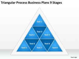 Business Process Management Diagram Triangular Plans 9 Stages Powerpoint Templates