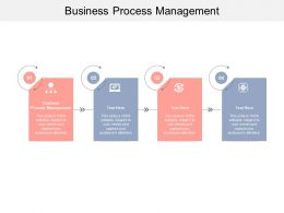 Business Process Management Ppt Powerpoint Presentation Infographic Template Structure Cpb
