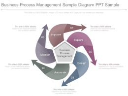 Business Process Management Sample Diagram Ppt Sample