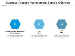 Business Process Management Service Offerings Ppt Powerpoint Presentation Gallery Show Cpb